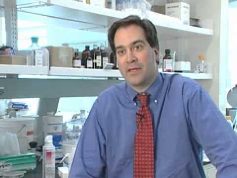 Professor Chad Mirkin - For Undergrads