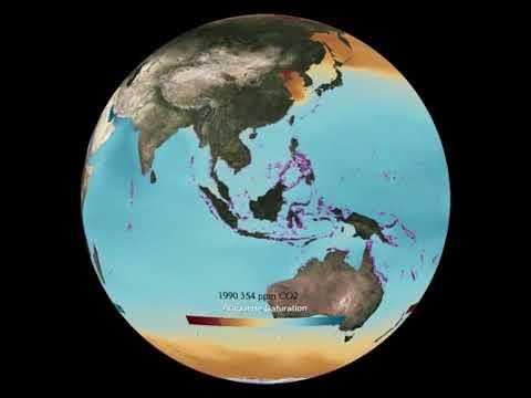 Ocean acid aragonite by NOAA