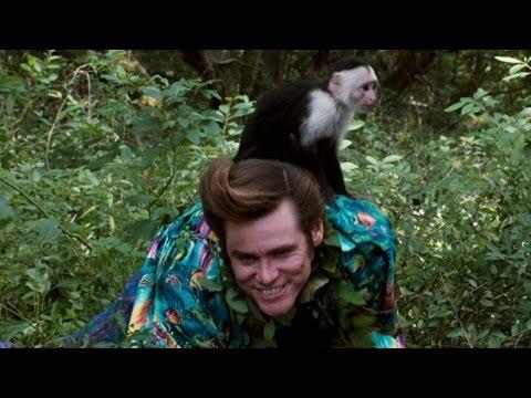 Ace Ventura: When Nature Calls (1995) ||...