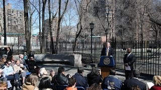 Mayor Bill de Blasio Administration Appointment Mitchell Silver as Park Commissioner