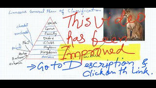 Classification of Animal Kingdom| Taxonomy of  Hierarchy .wmv