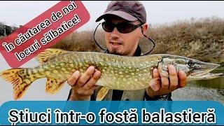Pescuit pe SĂLBATIC - Spinning cu suprize pe o baltă abandonată - 2019