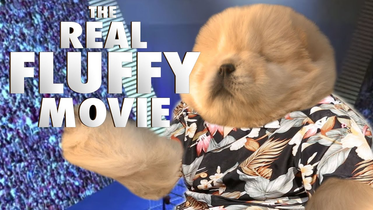 THE FLUFFY MOVIE (Chow Puppy Parody) - THE REAL FLUFFY MOVIE