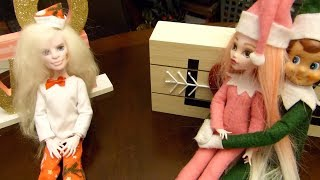 Elf on the Shelf: Here Comes Twinkle Toes!