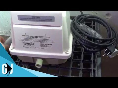 #270: LPH45 Linear Piston Air Pump Review And Plan For Fishroom - Update Monday