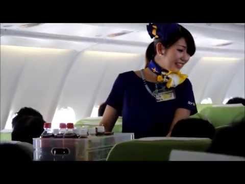 【就航初便】 スカイマーク エアバスA330で福岡へ