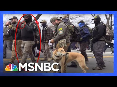 Experts Analyze New Information on Oath Keepers, Proud Boys Linked to Capitol Insurrection | MSNBC