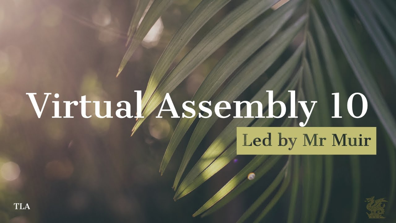 Virtual Assembly 10