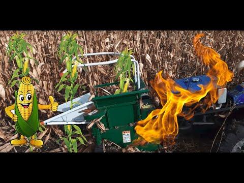 Уборка кукурузы мотоблоком сезон 2019 -Harvesting corn with a walk-behind tractor(tiller) ENG-SUB