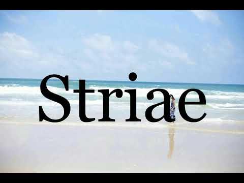 Download How To Pronounce Striae🌈🌈🌈🌈🌈🌈Pronunciation Of Striae