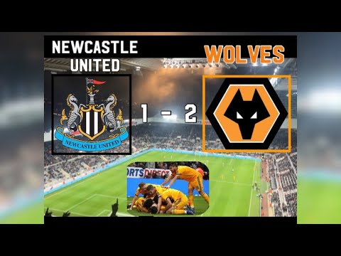 Newcastle United 1 - 2 Wolves| My Match Highlights| (09/12/2018)