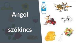 hogy vannak tabletták a férgek ellen?, Trichinosis kutatási módszerek