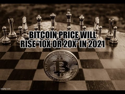 Bitcoin Price Will Rise '10x or 20x' in 2021