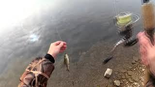 Рыбалка на Хариуса . Река Ангара. 01.10.2017