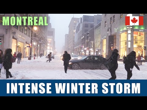 Montreal Downtown Snowstorm