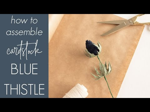 Blue Thistle Assembly Instructions