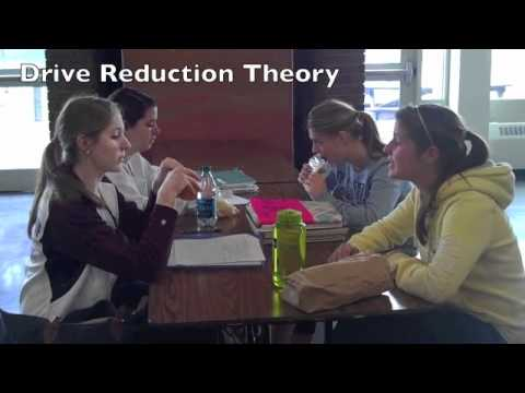 mean girls psychological theories Social dominance theory explains the behaviors that i participated in and experienced in middle and high school as well as the behaviors in the above mentioned move, mean girls the theory.