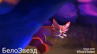 Златошейка и Звездоцап [Коты Воители-Cats Warriors (Без чувств)]