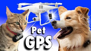 POD 3 Pet GPS Tracker - WiFi Pet Tracker & Activity Monitor