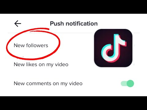 How To See Tik Tok Follower Request Youtube