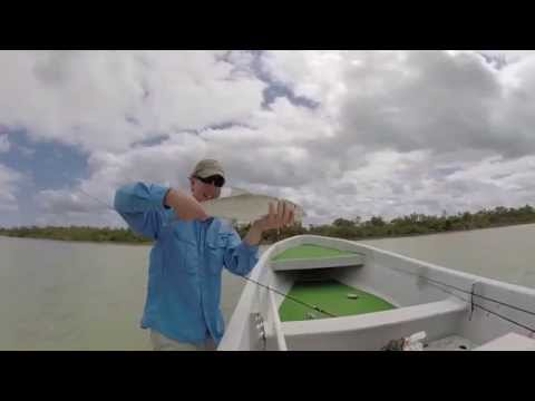 Tarpon, Permit & Bonefish Fishing Chetumal Bay - Xcalak, Mexico February 2015