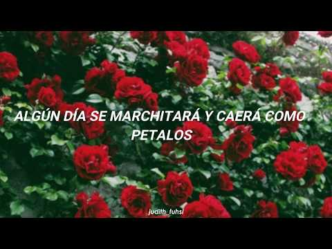 Download Lagu ASTRO 아스트로 - 피어나 Bloom Sub Español Mp3