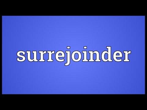 Header of surrejoinder