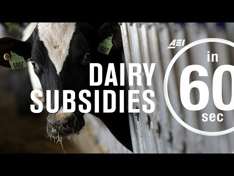 Dairy subsidies: Bad for business? | IN 60 SECONDS