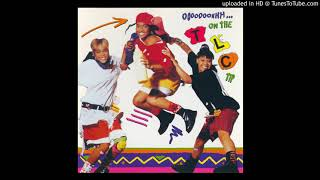 TLC   What About Your Friends (Audio)