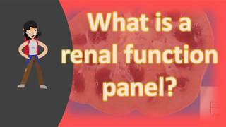 What is a renal function panel ?