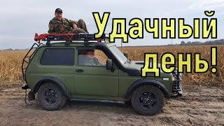 Находок полные карманы Коп по полям с NOKTA Anfibio Multi Фильм 101