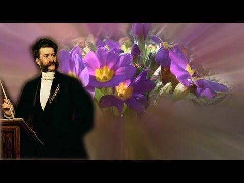 Wiener Blut (Walzer Music Musik) Johann Strauss (Viennese Waltz)