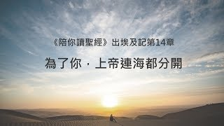 出埃及記14章/陪你讀聖經《為了你,上帝連海都分開》