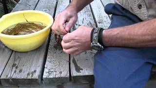 Fireweed Cordage - beginner learning