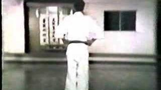 Heian Sandan Shotokai Karate-do