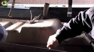 Video CSECO Buster Helps CPB Seize Drugs at the Mexican Border download MP3, 3GP, MP4, WEBM, AVI, FLV November 2017