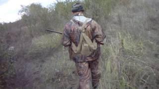 Охота на куропатку в октябре видео
