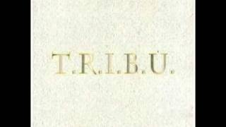TRIBU - Vous permettez