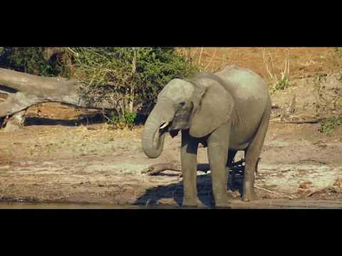 Explore Botswana Uniquely - AfricanOverlandTours.com