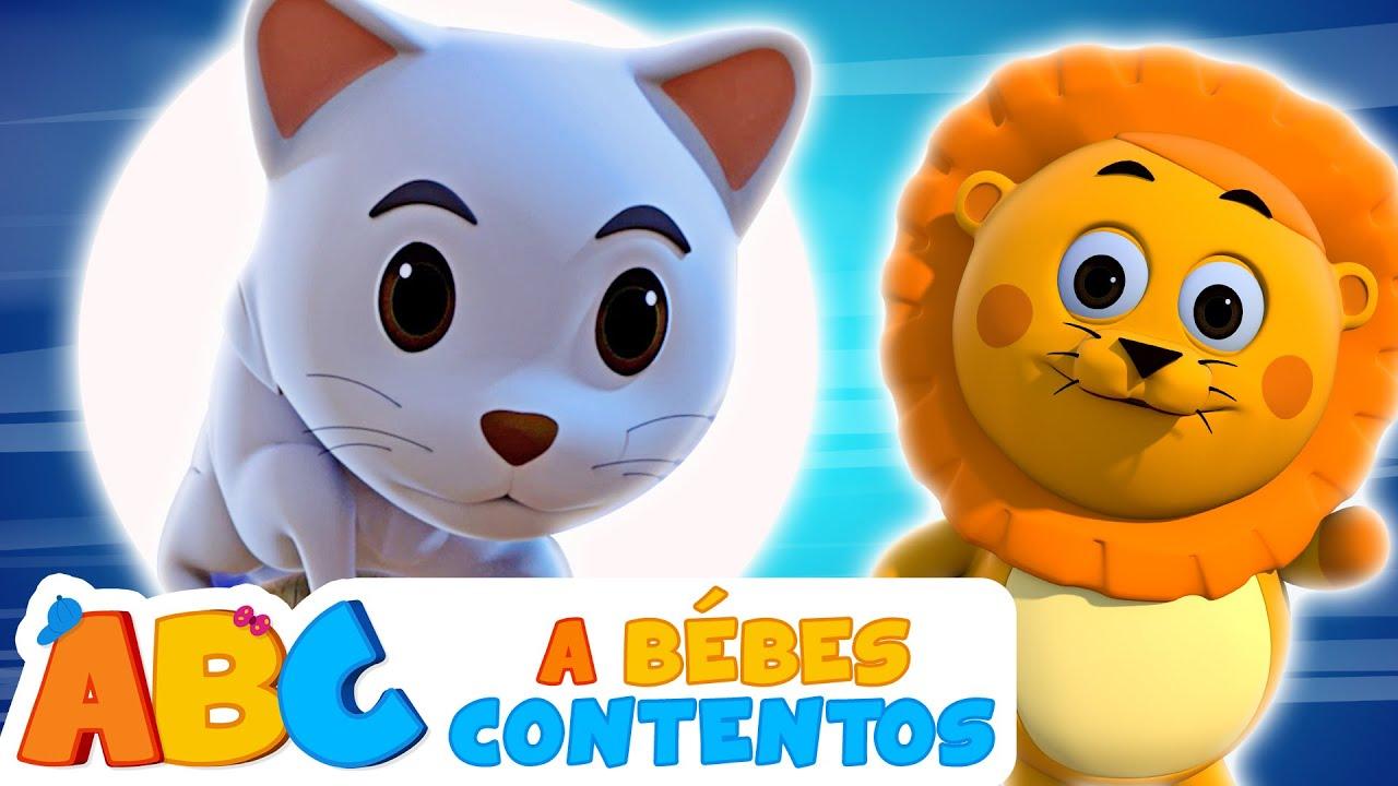 Lindo Gatito - NUEVA Canción Infantil Animada | A Bebés Contentos