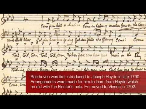 Beethoven's Biography