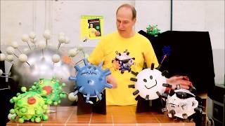 Unser Immunsystem gegen Viren Teil 3: Killerzellen (T-Zellen)