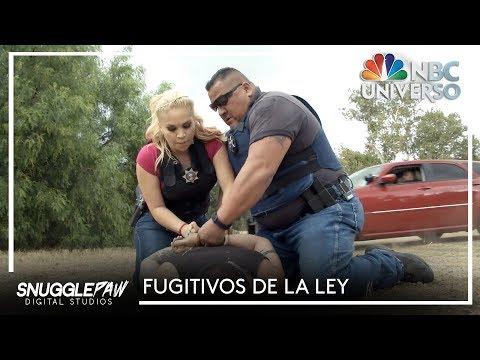 Fugitivos de La Ley   Season 3 Teaser