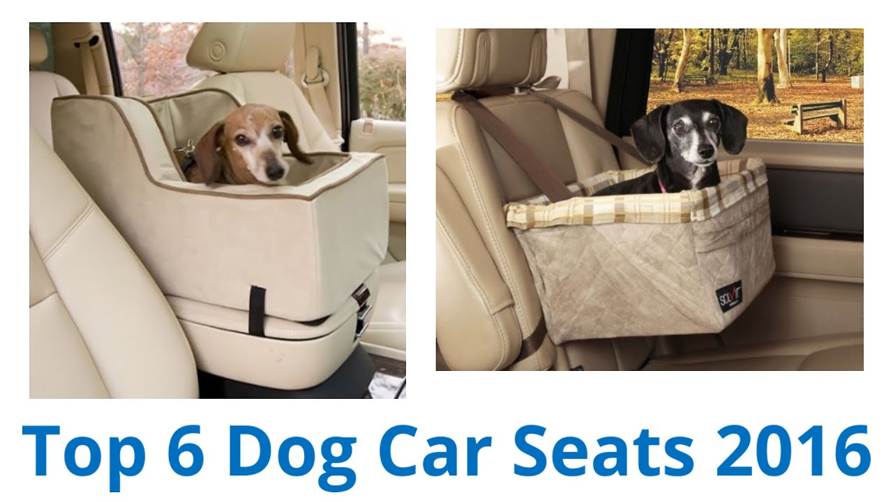6 Best Dog Car Seats 2016
