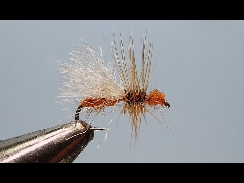 Cinnamon Flying Ant | Yellowstone Country Fly Fishing