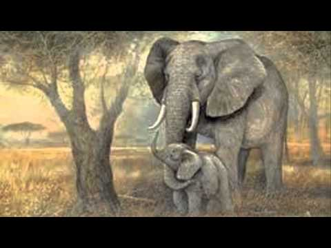 L Elephant Carnival Of The Animals Saint Saens: Carnival ...