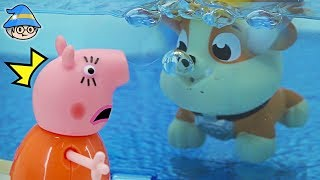 Peppa pig went to the swimming pool. Paw Patrol is in the water. Peppa pig Episode.