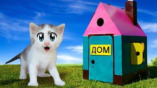 ГИГАНТСКИЙ картонный ДОМИК для КОТОВ! Смешной Кот и Кошечка Мурка и РУМ ТУР