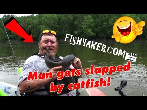 Man gets slapped by catfish! - Fishyaker