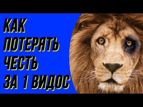 Лев против всех, а все против Льва